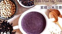 紫糯小米豆浆 Wild Grain Soy Milk的做法视频
