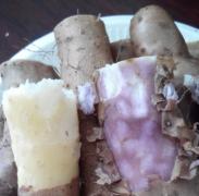 山药变紫能吃吗 山药变紫怎么回事