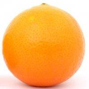 【盐蒸橙子】盐蒸橙子治疗咳嗽有
