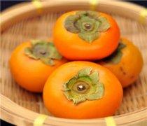 【柿子和苹果能一起吃吗】柿子和苹果要怎么吃_柿子和苹果的营养价值