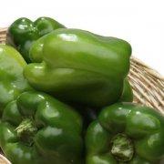 【柿子椒的做法】柿子椒的营养价值_柿子椒辣吗