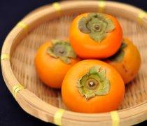 【吃柿子的禁忌】吃柿子的好处和坏处_吃柿子能喝茶吗