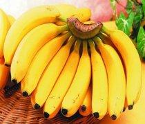 【香蕉的功效与作用】香蕉的营养价值