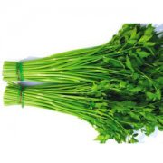 【水芹菜】水芹菜的功效与作用_水芹菜的做法大全